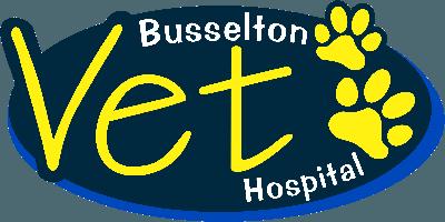 busselton Vet Hospital
